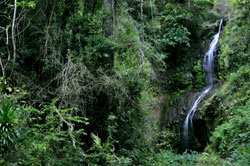 Waterfalls craters lemurs chameleons and more at Montagne D Ambre